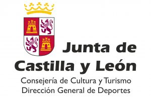 Junta de Castilla y León Logo